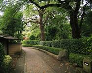 戸定邸(松戸駅から徒歩10分)